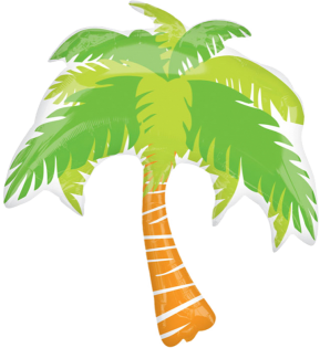 Summer Scene Palm Tree