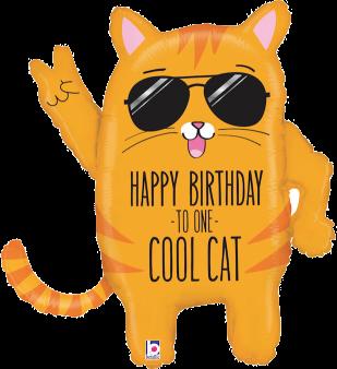 Happy Birthday Cool Cat