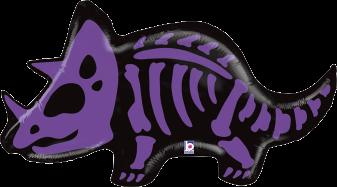Triceratops Bones