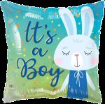 Boy Baby Bunny